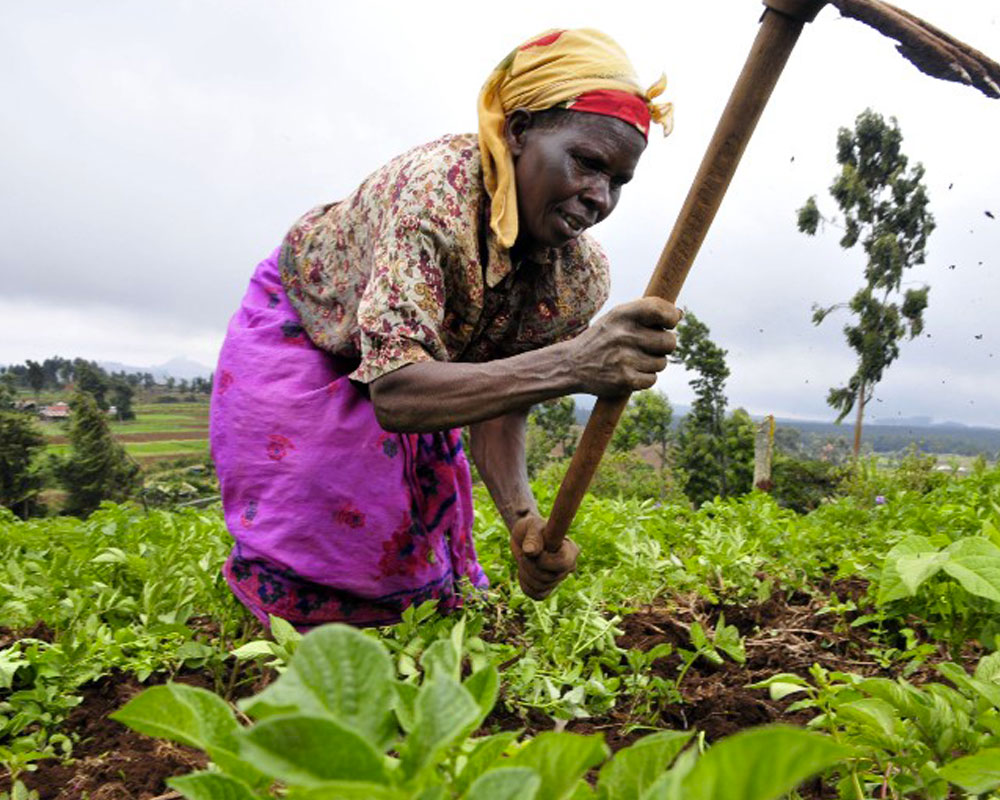 How Farmers Can Be Financially Included Using Digital Technologies